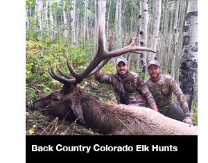 Back Country Colorado Elk Hunts