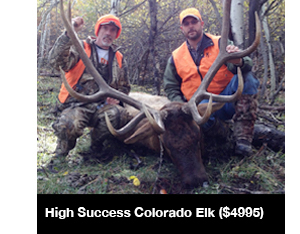 High Success Colorado Elk