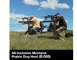 All-Inclusive Montana Prairie Dog Hunt